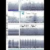 v_rap_74_v1.jpg - URL